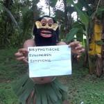 Sisyphotische Sykomoren Symphonie
